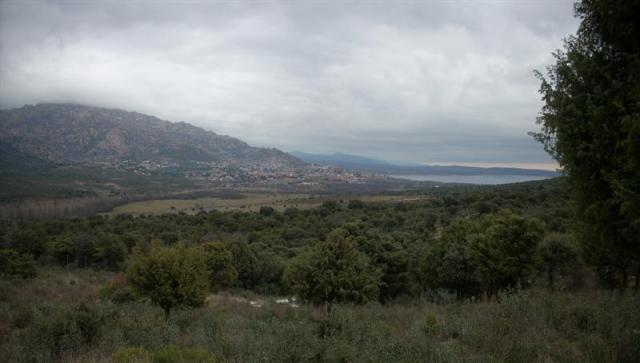 panorama-9-medium