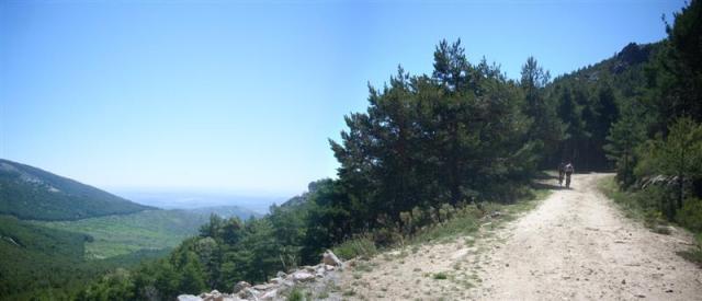 Panorama 1 (Medium)