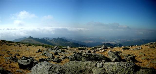 Panorama 7 (Medium)